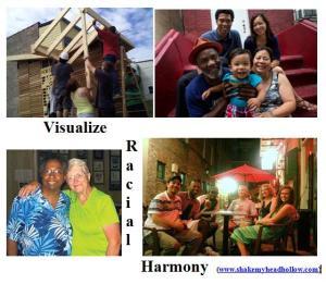 visualize race2