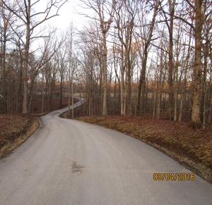 2 Blueberry Lane